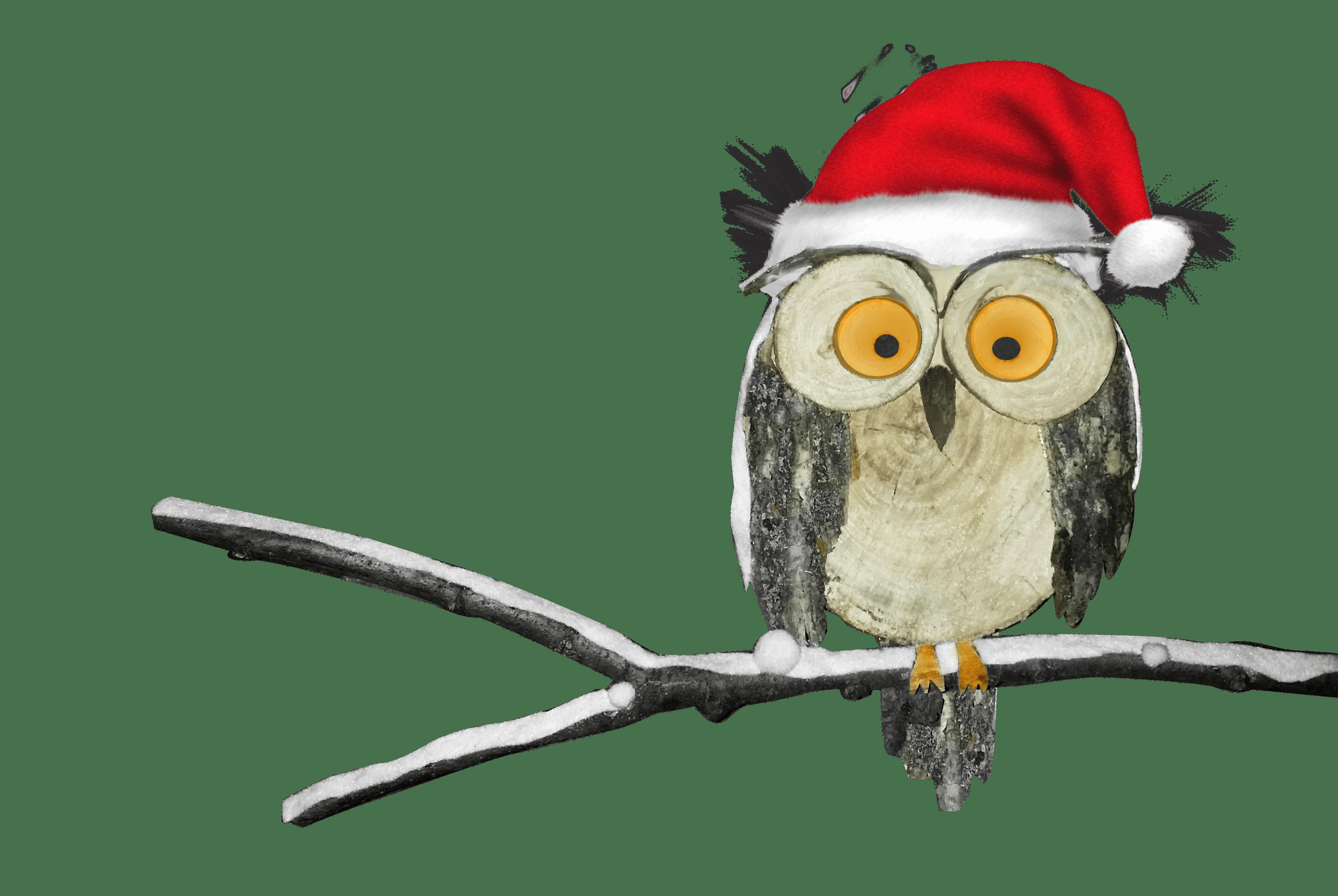 Hibou de Noel IST 2019